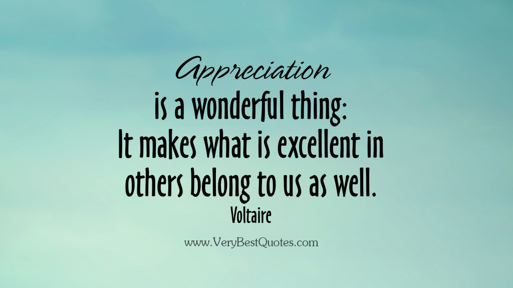 appreciation-quotes-wonderful-things-1024x575.jpg